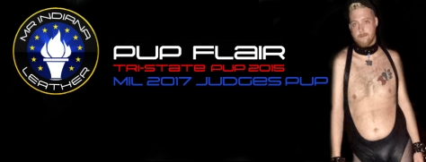 pup-flair-mil-2017-judges-pup